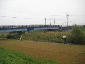 第4回河川清掃3