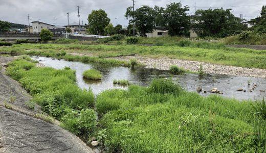 2019年 第2回河川清掃&水質調査報告