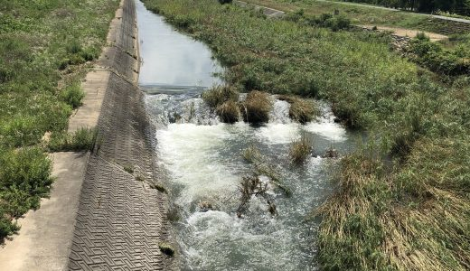 令和2年 第2回河川清掃の報告